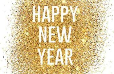 Linn Stenholm happy new year