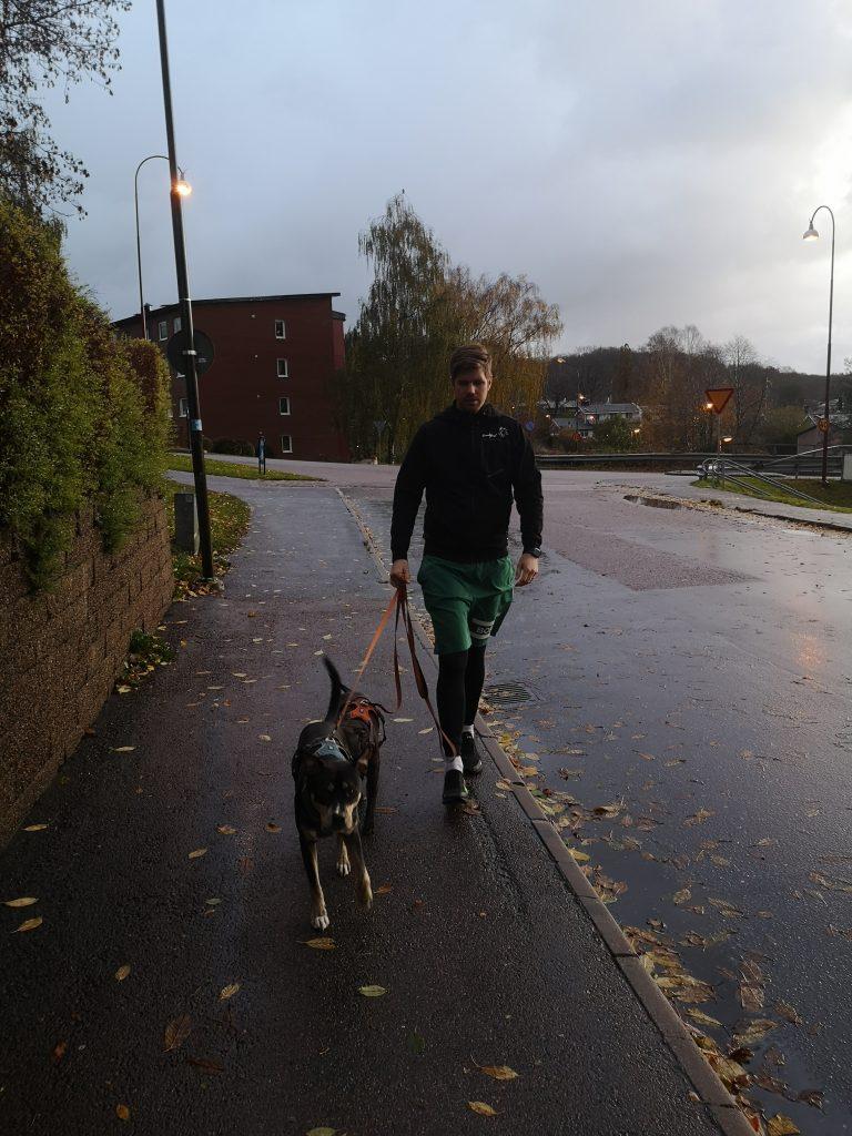 Linn Stenholm fitness Redcon1