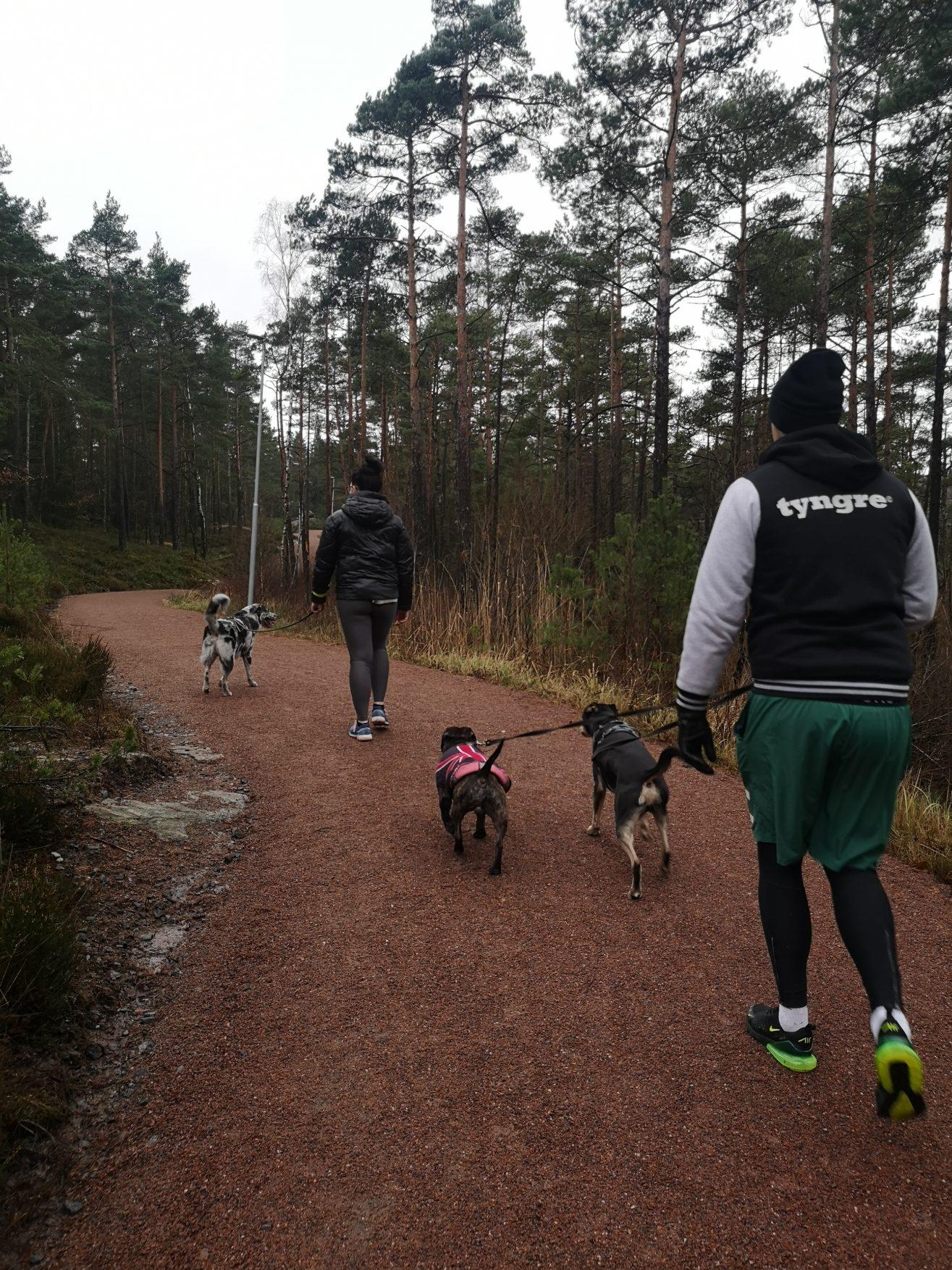 Linn Stenholm Fitness weekend