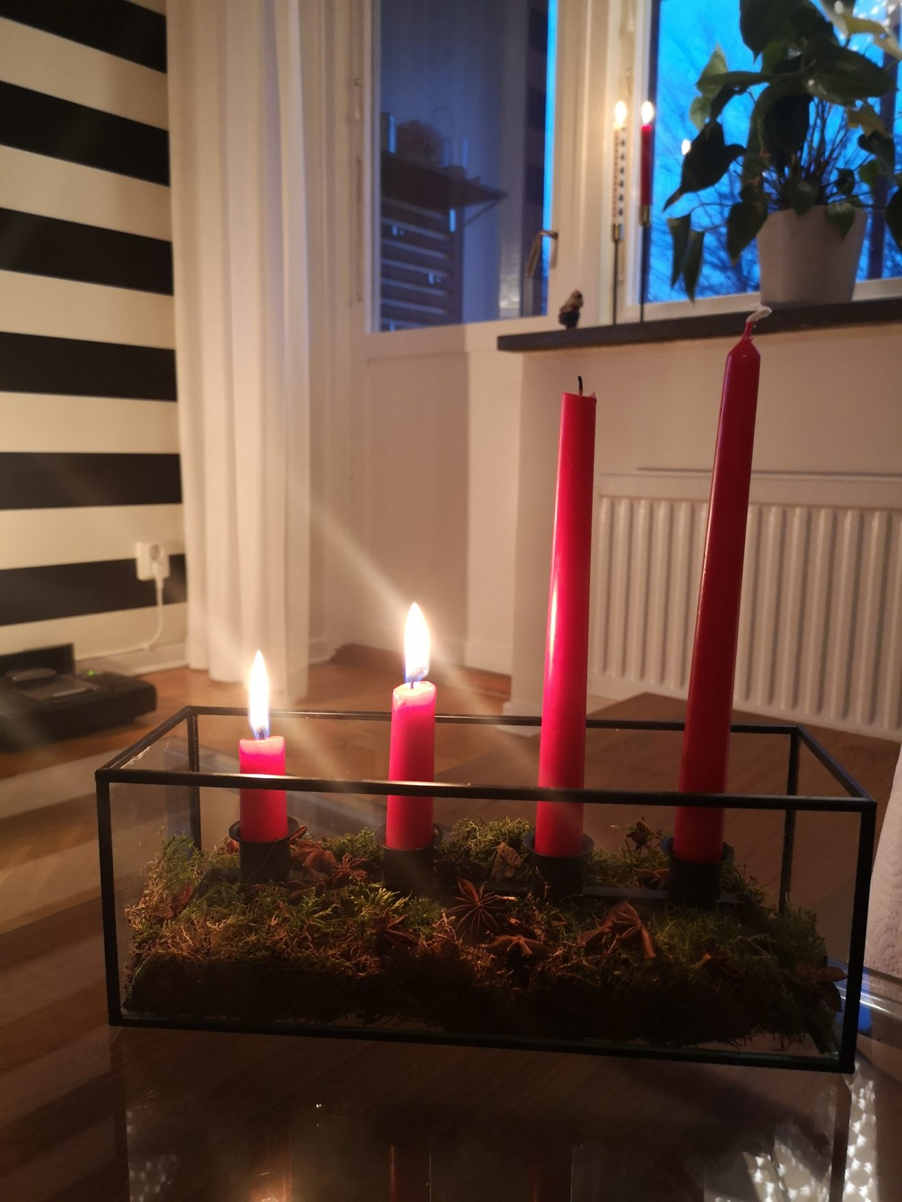 Linn Stenholm Christmas